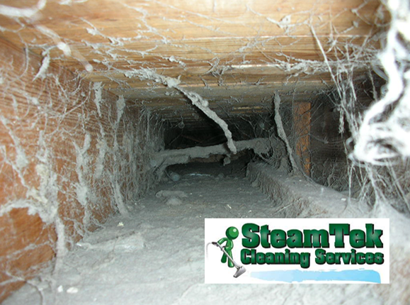SteamTek  Cleaning Services: Air Handling Unit Cleaned or $100 off a full HVAC system cleaning JUST $50