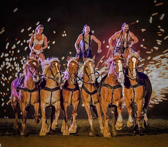 Click Big Deals -  Enjoy two tickets to the captivating evening performance GLADIUS for 50% OFF at the Black Hills Horse Expo! ONLY $23.50 for a pair!