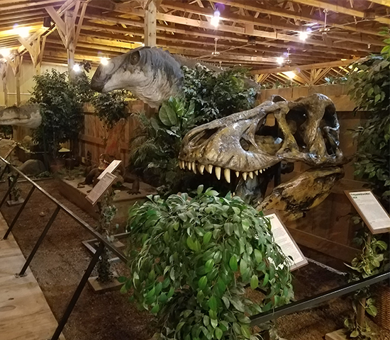 See the Newly Remodeled Dinosaur Mini-Golf at Dinosaur Museum, Now Open thru December, next to Reptile Gardens at 50% Off! Family 4 Pack Now Only $25!