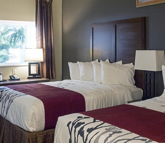 Get a 1 night's stay at The Newcastle Lodge and Convention Center and $25 to Grazer's Restaurant, a $149 value, half-price for just $74.50!