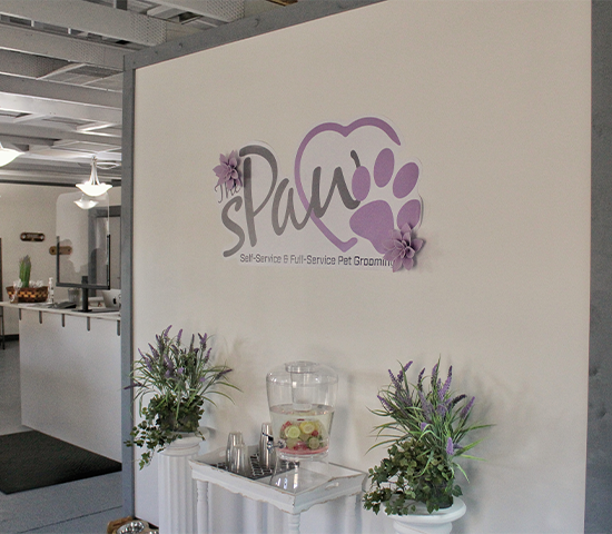 sPaw Pet Grooming current clients-come back and give your pups a luxurious sPaw Package and show their paws some love! 50% OFF! $38, NOW ONLY $19!!